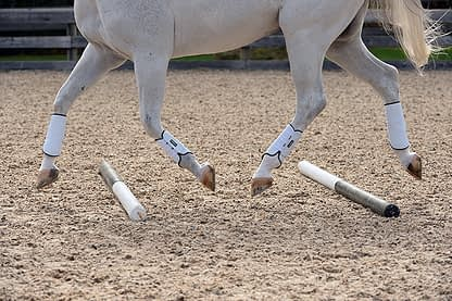 horse boot white leather